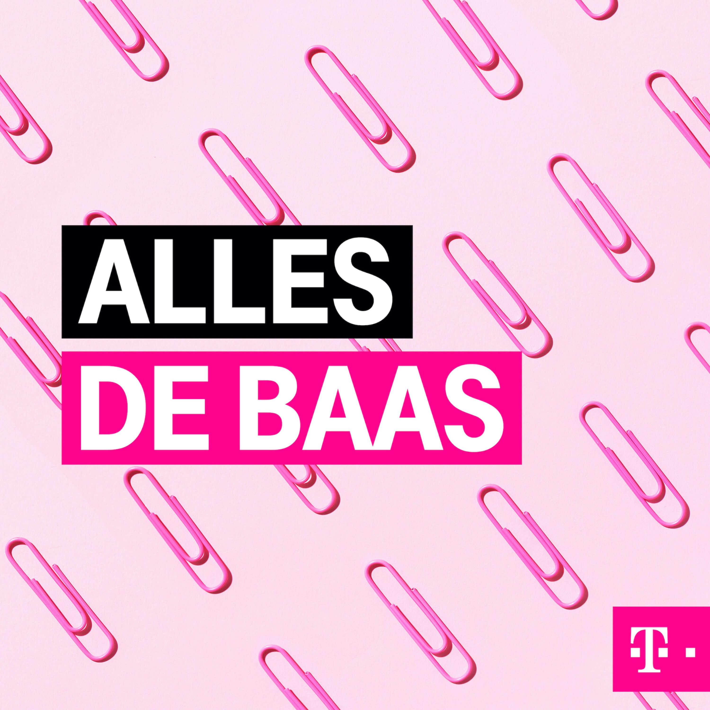 Cover Image Alles De Baas